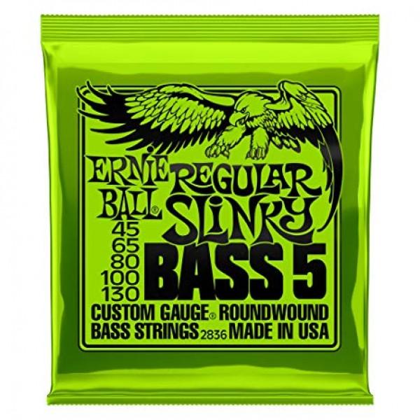 Ernie Ball Regular Slinky 5-String 45-130  2836