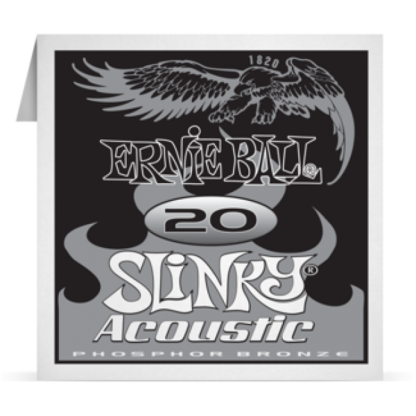 Ernie Ball 020 Slinky Acoustic Guitar Phosphor bronze