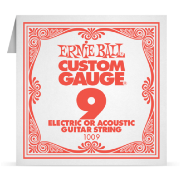 Ernie Ball 009 Plain Steel Electric and Acoustic Guitar 1009