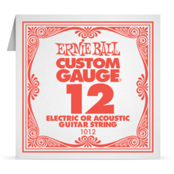Ernie Ball 012 Plain Steel Electric and Acoustic Guitar 1012