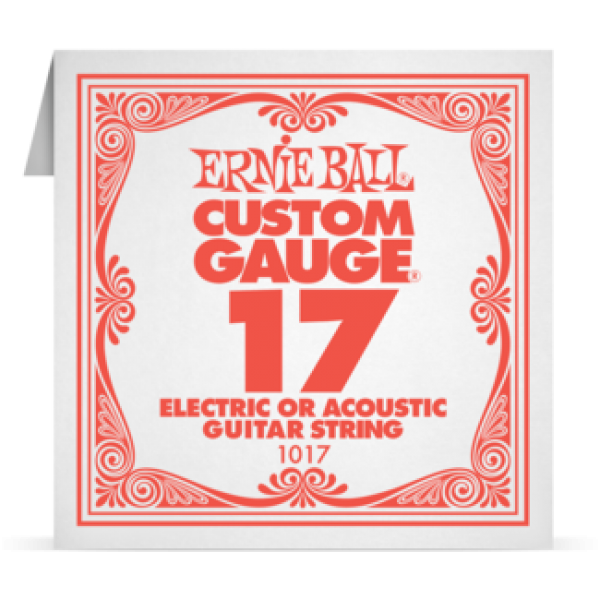 Ernie Ball 017 Plain Steel Electric and Acoustic Guitar 1017