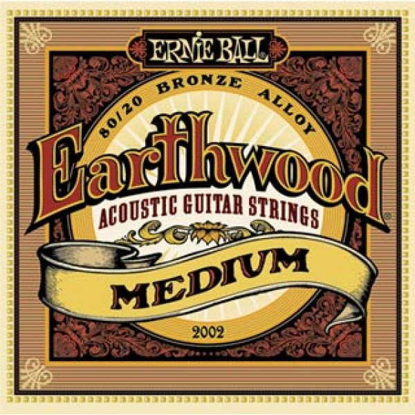 Earthwood Medium Acoustic 80/20 Bronze 2002 13-56